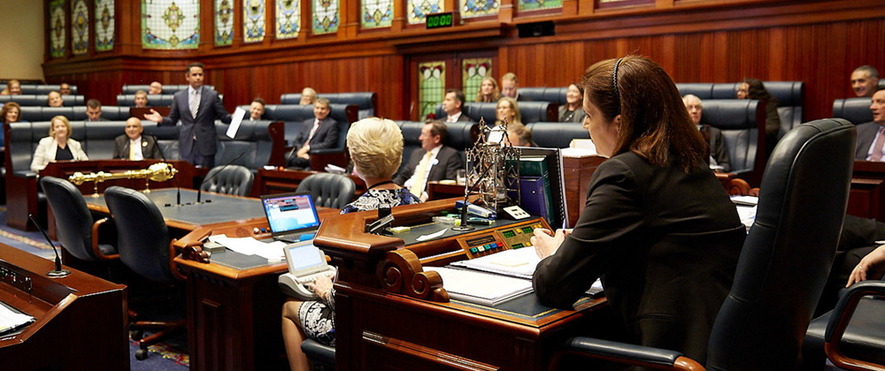 Member standing and speaking in the Legislative Assembly chamber while others listen at Parliament House